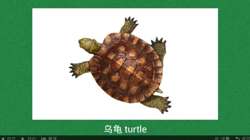0次下载看图识动物是一款儿童教育软件
